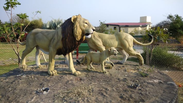 Exotic Expedition in Sasan Gir - Heaven For Wildlife Lovers