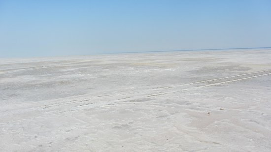 A Walk Through Dholavira : White Colour of the Rann